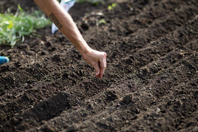 Find Farm Investors   Steward